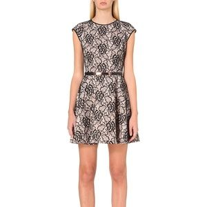 Ted Baker Dresses - Ted Baker Fearnie Lace Fit and Flare Dress